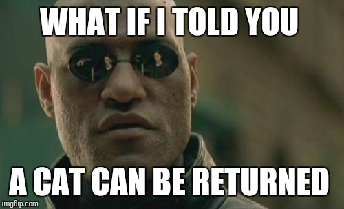 Matrix Morpheus Meme | WHAT IF I TOLD YOU A CAT CAN BE RETURNED | image tagged in memes,matrix morpheus | made w/ Imgflip meme maker