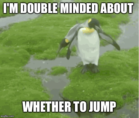 I'M DOUBLE MINDED ABOUT WHETHER TO JUMP | made w/ Imgflip meme maker