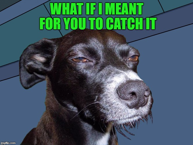 WHAT IF I MEANT FOR YOU TO CATCH IT | made w/ Imgflip meme maker