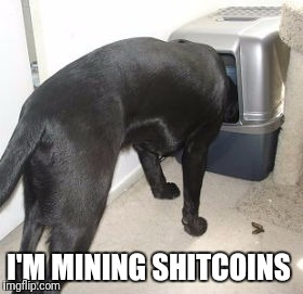 I'M MINING SHITCOINS | image tagged in bitcoin | made w/ Imgflip meme maker