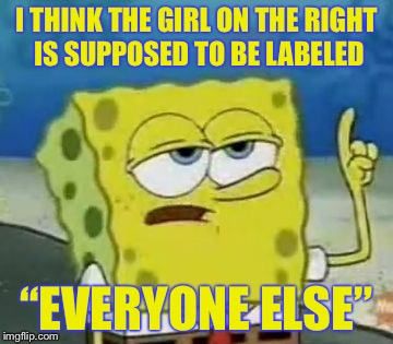 "I THINK THE GIRL ON THE RIGHT IS SUPPOSED TO BE LABELED ""EVERYONE ELSE"" 