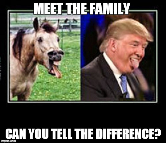 MEET THE FAMILY CAN YOU TELL THE DIFFERENCE? | image tagged in trumpfamily | made w/ Imgflip meme maker