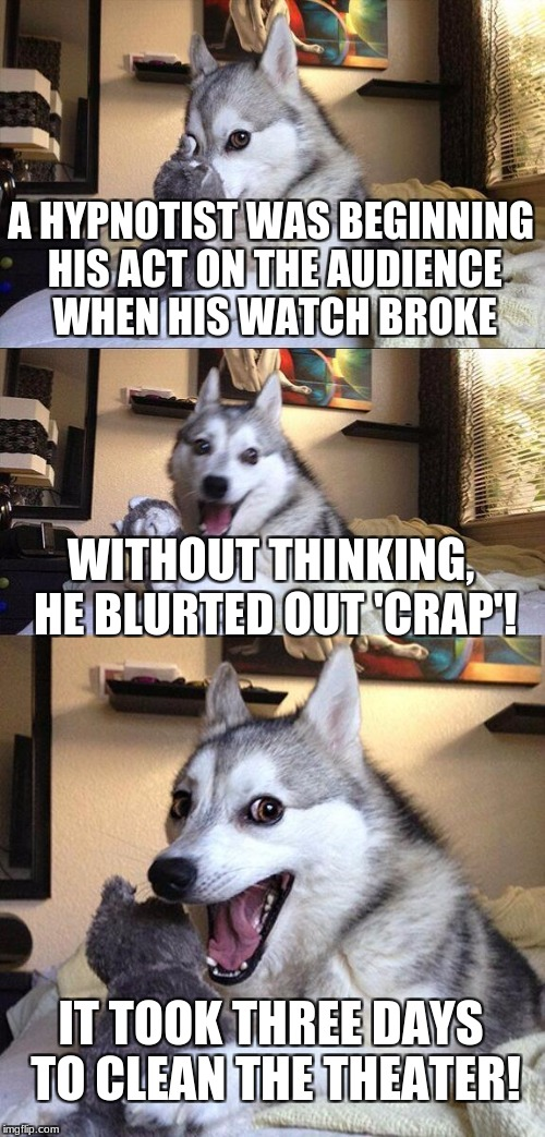 Bad Pun Dog Meme | A HYPNOTIST WAS BEGINNING HIS ACT ON THE AUDIENCE WHEN HIS WATCH BROKE WITHOUT THINKING, HE BLURTED OUT 'CRAP'! IT TOOK THREE DAYS TO CLEAN  | image tagged in memes,bad pun dog | made w/ Imgflip meme maker