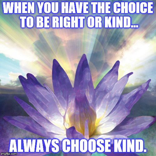 KINDNESS WINS | WHEN YOU HAVE THE CHOICE TO BE RIGHT OR KIND... ALWAYS CHOOSE KIND. | image tagged in kindness,choices,love wins,good | made w/ Imgflip meme maker