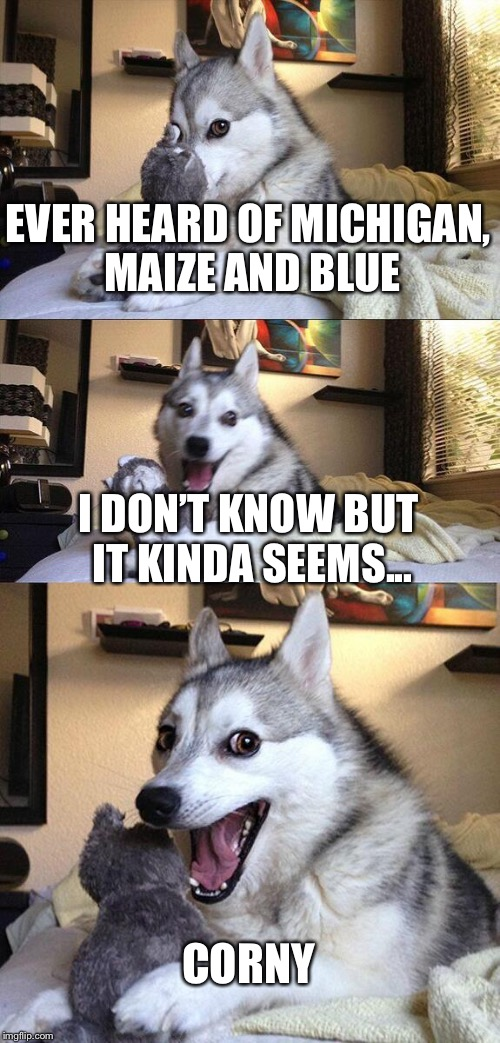 Bad Pun Dog Meme | EVER HEARD OF MICHIGAN, MAIZE AND BLUE I DON'T KNOW BUT IT KINDA SEEMS... CORNY | image tagged in memes,bad pun dog | made w/ Imgflip meme maker