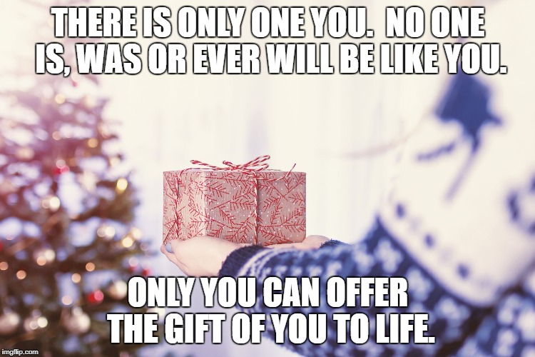 THERE IS ONLY ONE YOU.  NO ONE IS, WAS OR EVER WILL BE LIKE YOU. ONLY YOU CAN OFFER THE GIFT OF YOU TO LIFE. | image tagged in the gift of you | made w/ Imgflip meme maker