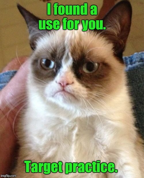 Grumpy Cat Meme | I found a use for you. Target practice. | image tagged in memes,grumpy cat | made w/ Imgflip meme maker