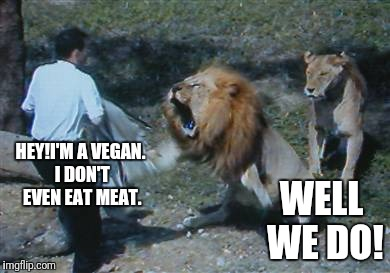 Survival of the Fittest Mammal | HEY!I'M A VEGAN. I DON'T EVEN EAT MEAT. WELL WE DO! | image tagged in vegans,darwin,lion,vegetarian | made w/ Imgflip meme maker