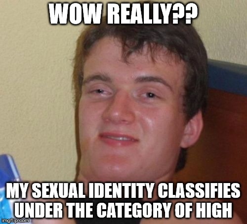 10 Guy Meme | WOW REALLY?? MY SEXUAL IDENTITY CLASSIFIES UNDER THE CATEGORY OF HIGH | image tagged in memes,10 guy | made w/ Imgflip meme maker