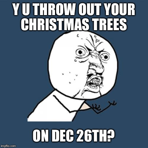 Y U No Meme | Y U THROW OUT YOUR CHRISTMAS TREES ON DEC 26TH? | image tagged in memes,y u no | made w/ Imgflip meme maker