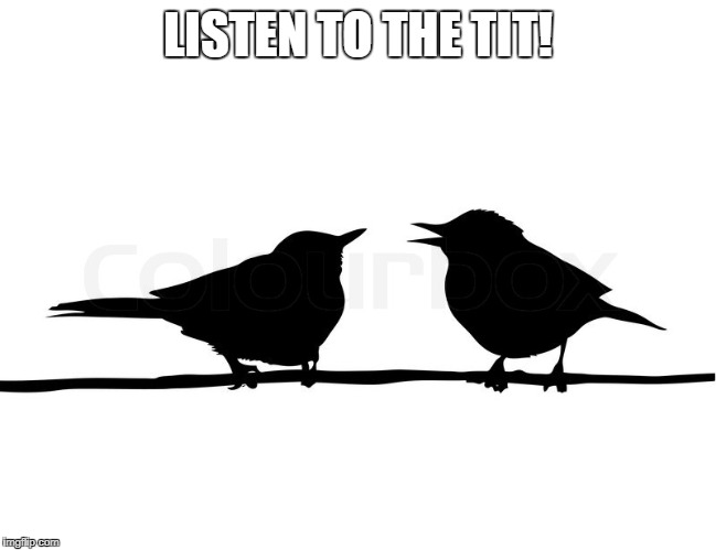 LISTEN TO THE TIT! | made w/ Imgflip meme maker