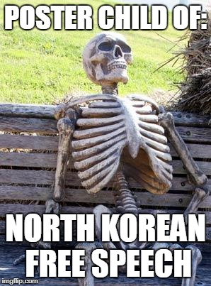 Best Korea? | POSTER CHILD OF: NORTH KOREAN FREE SPEECH | image tagged in memes,waiting skeleton | made w/ Imgflip meme maker