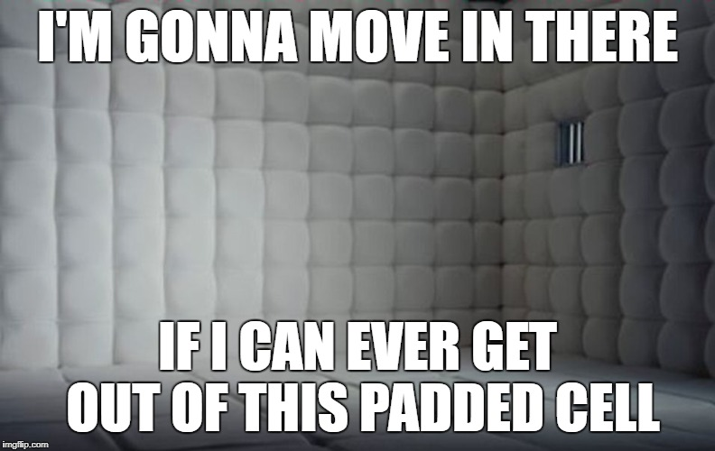 I'M GONNA MOVE IN THERE IF I CAN EVER GET OUT OF THIS PADDED CELL | made w/ Imgflip meme maker