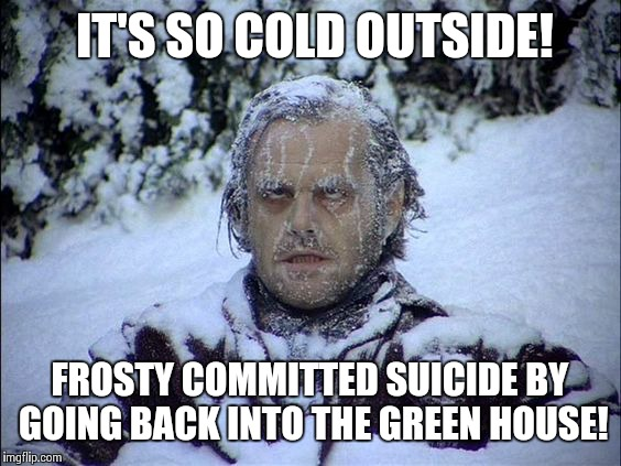 Global Warming | IT'S SO COLD OUTSIDE! FROSTY COMMITTED SUICIDE BY GOING BACK INTO THE GREEN HOUSE! | image tagged in global warming | made w/ Imgflip meme maker
