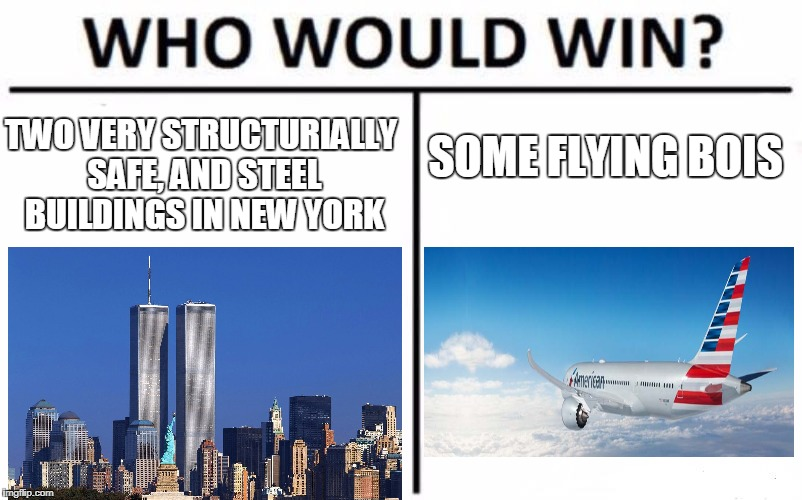 Who Would Win? Meme | TWO VERY STRUCTURIALLY SAFE, AND STEEL BUILDINGS IN NEW YORK SOME FLYING BOIS | image tagged in memes,who would win | made w/ Imgflip meme maker