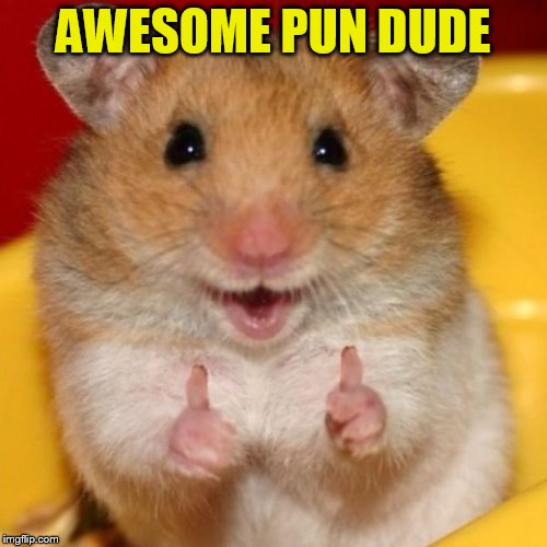 Two Thumbs Up | AWESOME PUN DUDE | image tagged in two thumbs up | made w/ Imgflip meme maker