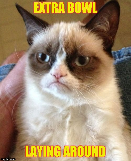 Grumpy Cat Meme | EXTRA BOWL LAYING AROUND | image tagged in memes,grumpy cat | made w/ Imgflip meme maker