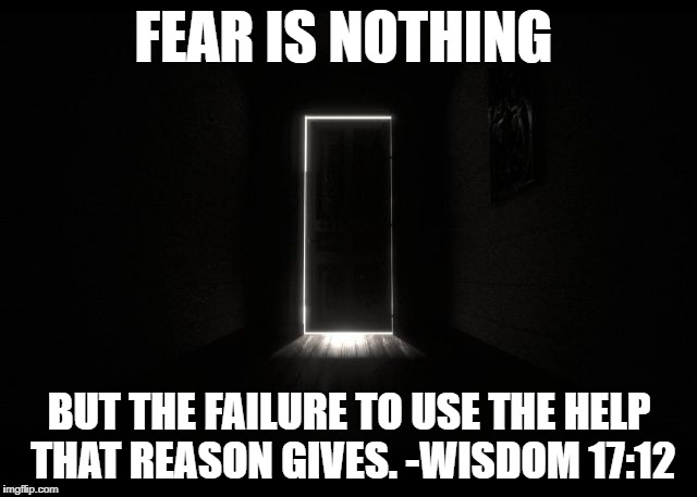Fear and Wisdom | FEAR IS NOTHING BUT THE FAILURE TO USE THE HELP THAT REASON GIVES. -WISDOM 17:12 | image tagged in fear,wisdom,illusion,empowerment,think,trick | made w/ Imgflip meme maker