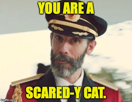 YOU ARE A SCARED-Y CAT. | made w/ Imgflip meme maker
