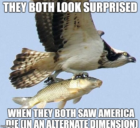 THEY BOTH LOOK SURPRISED WHEN THEY BOTH SAW AMERICA DIE (IN AN ALTERNATE DIMENSION) | image tagged in eagle carrying fish | made w/ Imgflip meme maker