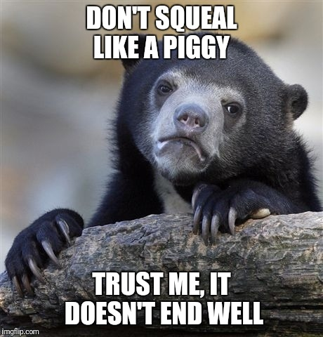 Confession Bear Meme | DON'T SQUEAL LIKE A PIGGY TRUST ME, IT DOESN'T END WELL | image tagged in memes,confession bear | made w/ Imgflip meme maker