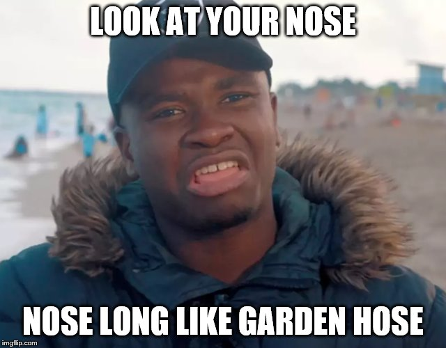 Big shaq | LOOK AT YOUR NOSE NOSE LONG LIKE GARDEN HOSE | image tagged in big shaq | made w/ Imgflip meme maker