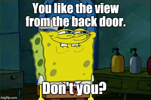 Dont You Squidward Meme | You like the view from the back door. Don't you? | image tagged in memes,dont you squidward | made w/ Imgflip meme maker