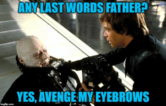 Darth Vader's Last Words |  ANY LAST WORDS FATHER? YES, AVENGE MY EYEBROWS | image tagged in darth vader's last words,memes,meme,eyebrows,funny,darth vader luke skywalker | made w/ Imgflip meme maker