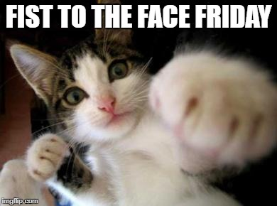 Fist to the face - kitty | FIST TO THE FACE FRIDAY | image tagged in friday,fist,kitty | made w/ Imgflip meme maker