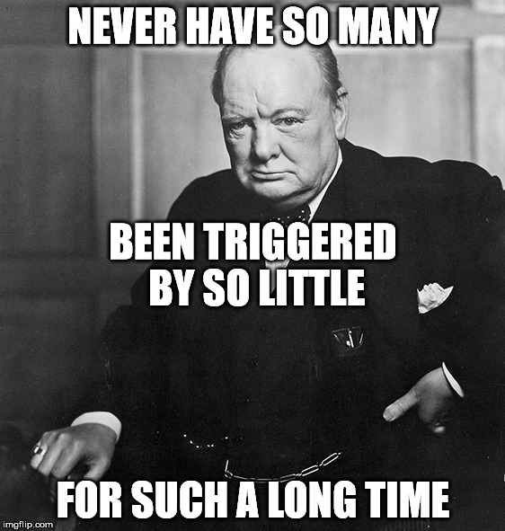 To all my liberal friends | NEVER HAVE SO MANY FOR SUCH A LONG TIME BEEN TRIGGERED BY SO LITTLE | image tagged in winston churchill | made w/ Imgflip meme maker