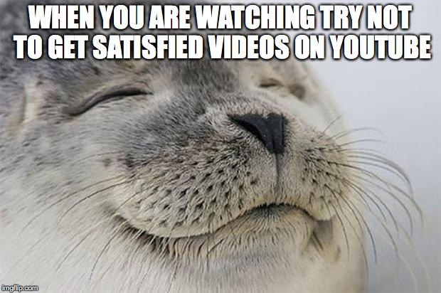 Satisfied Seal Meme | WHEN YOU ARE WATCHING TRY NOT TO GET SATISFIED VIDEOS ON YOUTUBE | image tagged in memes,satisfied seal | made w/ Imgflip meme maker