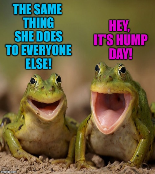 THE SAME THING SHE DOES TO EVERYONE ELSE! HEY, IT'S HUMP DAY! | made w/ Imgflip meme maker