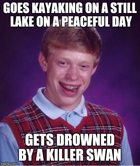 Bad Luck Brian Meme | GOES KAYAKING ON A STILL LAKE ON A PEACEFUL DAY GETS DROWNED BY A KILLER SWAN | image tagged in memes,bad luck brian | made w/ Imgflip meme maker