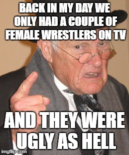 Back In My Day Meme | BACK IN MY DAY WE ONLY HAD A COUPLE OF FEMALE WRESTLERS ON TV AND THEY WERE UGLY AS HELL | image tagged in memes,back in my day | made w/ Imgflip meme maker