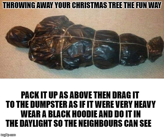 fun way to get rid of a christmas tree | THROWING AWAY YOUR CHRISTMAS TREE THE FUN WAY PACK IT UP AS ABOVE THEN DRAG IT TO THE DUMPSTER AS IF IT WERE VERY HEAVY WEAR A BLACK HOODIE  | image tagged in death | made w/ Imgflip meme maker