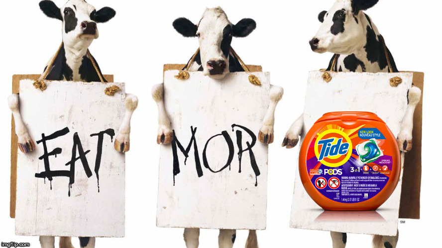 Eat more Tide Pods | image tagged in tide | made w/ Imgflip meme maker