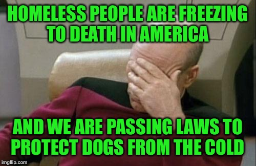 Captain Picard Facepalm Meme | HOMELESS PEOPLE ARE FREEZING TO DEATH IN AMERICA AND WE ARE PASSING LAWS TO PROTECT DOGS FROM THE COLD | image tagged in memes,captain picard facepalm,lynch1979 | made w/ Imgflip meme maker