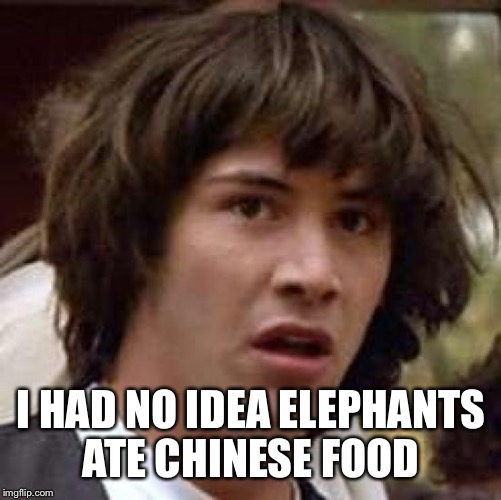 Conspiracy Keanu Meme | I HAD NO IDEA ELEPHANTS ATE CHINESE FOOD | image tagged in memes,conspiracy keanu | made w/ Imgflip meme maker