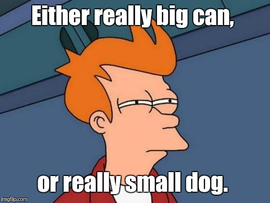 Futurama Fry Meme | Either really big can, or really small dog. | image tagged in memes,futurama fry | made w/ Imgflip meme maker