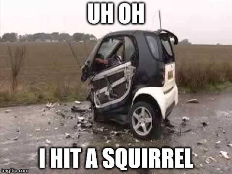 Smart Car Crash | UH OH I HIT A SQUIRREL | image tagged in smart car crash | made w/ Imgflip meme maker