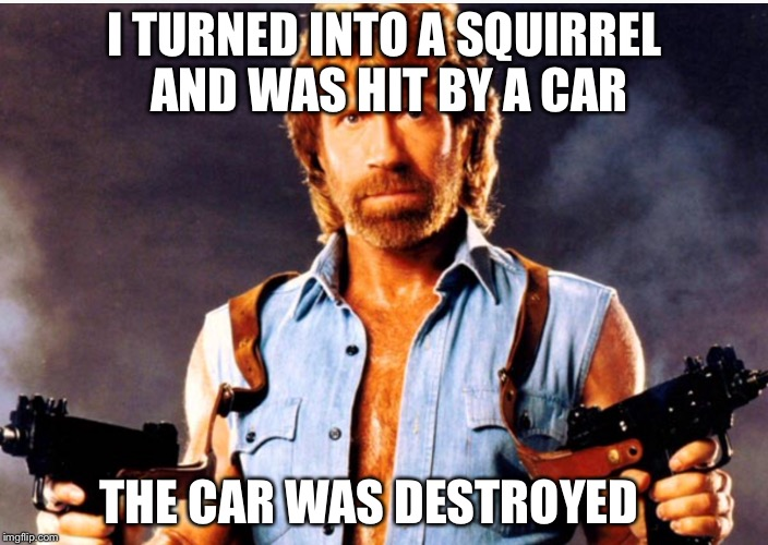 I TURNED INTO A SQUIRREL AND WAS HIT BY A CAR THE CAR WAS DESTROYED | made w/ Imgflip meme maker