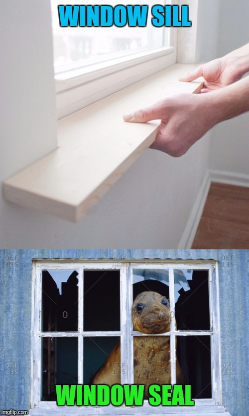 WINDOW SILL WINDOW SEAL | made w/ Imgflip meme maker