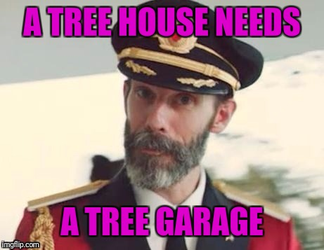 Captain obvious | A TREE HOUSE NEEDS A TREE GARAGE | image tagged in captain obvious | made w/ Imgflip meme maker