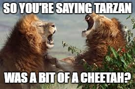 SO YOU'RE SAYING TARZAN WAS A BIT OF A CHEETAH? | made w/ Imgflip meme maker
