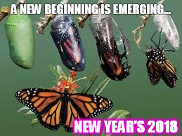 New Year's 2018 | A NEW BEGINNING IS EMERGING... NEW YEAR'S 2018 | image tagged in new years,change,transition | made w/ Imgflip meme maker
