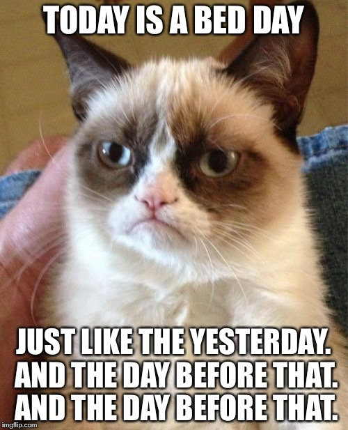 Grumpy Cat Meme | TODAY IS A BED DAY JUST LIKE THE YESTERDAY. AND THE DAY BEFORE THAT. AND THE DAY BEFORE THAT. | image tagged in memes,grumpy cat | made w/ Imgflip meme maker
