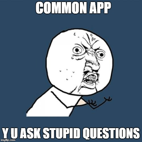 Y U No Meme | COMMON APP Y U ASK STUPID QUESTIONS | image tagged in memes,y u no | made w/ Imgflip meme maker