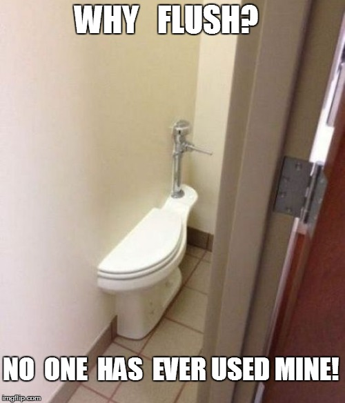 WHY   FLUSH? NO  ONE  HAS  EVER USED MINE! | made w/ Imgflip meme maker