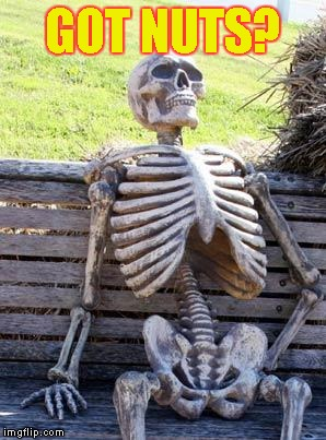 Waiting Skeleton Meme | GOT NUTS? | image tagged in memes,waiting skeleton | made w/ Imgflip meme maker