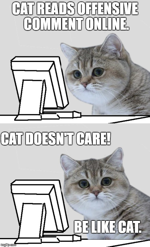 CAT READS OFFENSIVE COMMENT ONLINE. BE LIKE CAT. CAT DOESN'T CARE! | image tagged in computer-cat | made w/ Imgflip meme maker